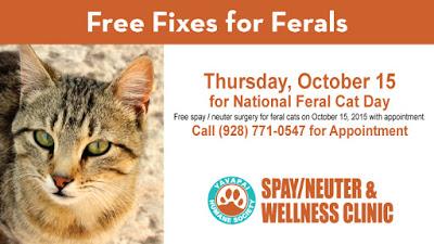 Free Cat Neuter Az